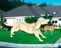 Сборная модель Собака