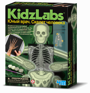 Набор 4M 00-03375 Юный врач. Скелет человека.