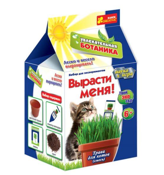 Трава для кота — Увлекательная ботаника. Вырасти меня